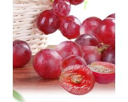 国产红提 葡萄/提子 1kg装 新鲜水果