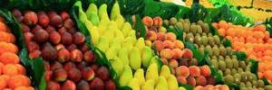 2021中国水果博览会